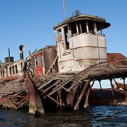 Ferry Seawells Point