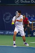 Novak Djokovic at the Dubai Duty Free Tennis Championships 2012