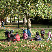 LONDON - November 12: People enjoy autumn sunshine in St James Park Novembr 12, 2008 in London, England. The National Trust survey suggests that across England, Wales and Northern Ireland one in eight  suffers from green place poverty, having access to two or fewer green spaces. It says ays that the top reasons given for visiting open spaces were to experience fresh air and space, for relaxation and to see wildlife...Please telephone : +44 (0)845 0506211 for usage fees .***Licence Fee's Apply To All Image Use***.IMMEDIATE CONFIRMATION OF USAGE REQUIRED.*Unbylined uses will incur an additional discretionary fee!*.XianPix Pictures  Agency  tel +44 (0) 845 050 6211 e-mail sales@xianpix.com www.xianpix.com