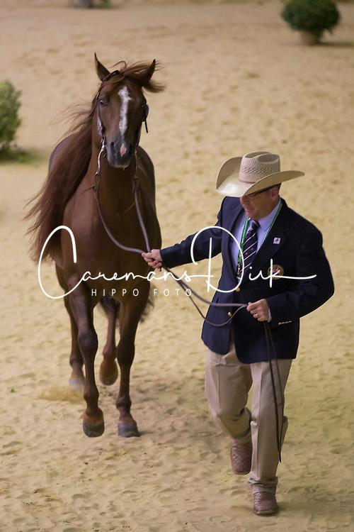 Francesca Sternberg, (GBR), Smart Like Valentino - Horse Inspection Reining  - Alltech FEI World Equestrian Games™ 2014 - Normandy, France.<br /> © Hippo Foto Team - Dirk Caremans<br /> 25/06/14