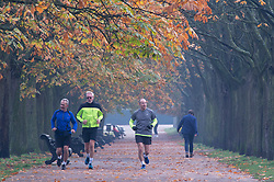 © Licensed to London News Pictures. 06/11/2020.  <br /> Greenwich, UK. Men running in the park. People get out and about in Greenwich Park, London to make the most of their lockdown exercise on a cold November morning.  Photo credit:Grant Falvey/LNP