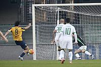 gol Luca Toni Hellas Verona Goal celebration<br /> Verona 20-12-2015 Stadio Bentegodi Football Calcio Serie A 2015/2016 Hellas Verona - Sassuolo<br /> foto Daniele Buffa/Image Sport/Insidefoto
