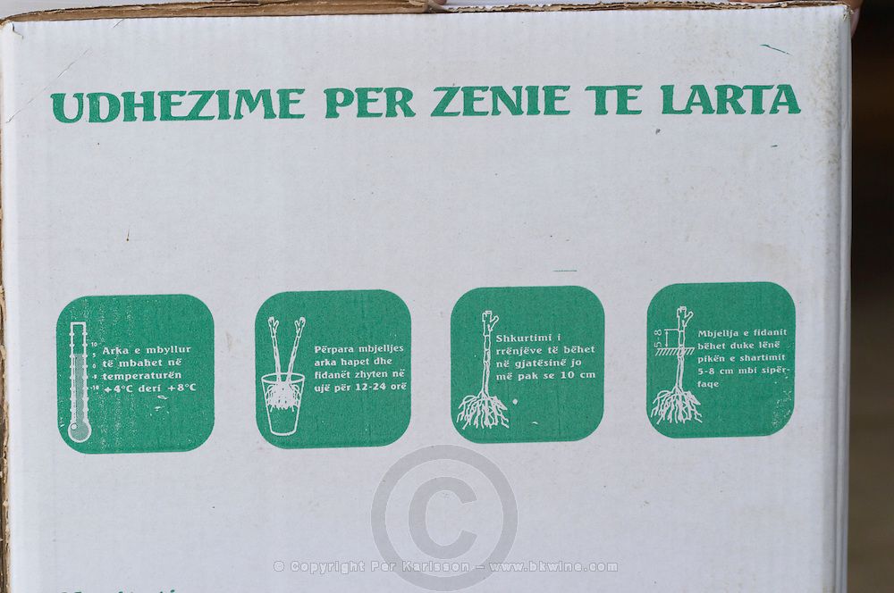 Packing and transportation box with name of the nursery and with instructions on how to handle the plants cuttings. Fidal vine nursery and winery, Zejmen, Lezhe. Albania, Balkan, Europe.