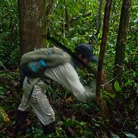 An Amazon Indian hacks a trail through Peru's Amazon Jungle with his machete.