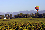 Hot air balloon with tourists in the Napa Valley, California.