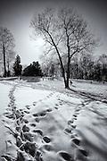 Winter sledding at the Benjamin Banneker Historical Park in Oella, Maryland.