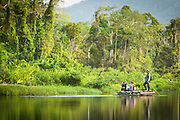 Searching for bird life at Manu learning centre, Manu National Park, Peru, South America
