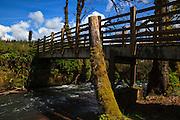USA, Oregon, Larwood Wayside, foot bridge.