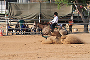 Israel, Ifat, Israeli Equestrian Organization Trail class competition Age 15. July 10, 2009,