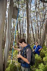 Sam Banks Checking Leadbeater's Possum Nest Box