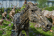 James Doran-Webb driftwood sculptures - The Chelsea Flower Show organised by the Royal Horticultural Society with M&G as its main sponsor for the final year. London 22 May, 2017