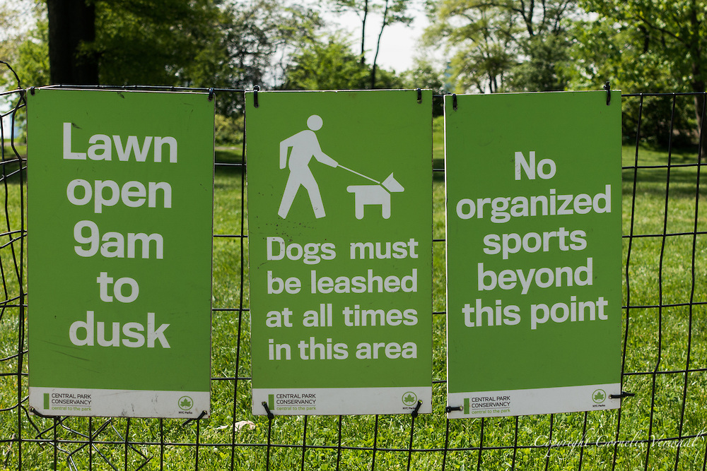 Signage in Central Park: Lawn open 9am to dusk; Dogs must be leashed at all times in this area; No organized sports beyond this point.