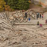 Tourist stand by a log jam at the end of Moraine Lake in Banff National Park, Alberta, Canada.