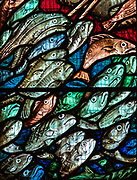 Detail of fish in stained glass window by William Nicholson, Mells church, Wiltshire, England, UK