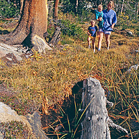 Mother and sons walk to fishing hole by meadow in Sierra Nevada above Bishop, California.