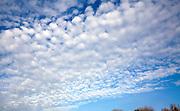 Mackerel sky clouds above summer county landscape, Shottisham, Suffolk, England, UK