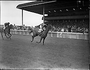 25/06/1958<br /> 06/25/1958<br /> 25 June 1958<br /> Irish Derby at the Curragh Racecourse, Co. Kildare. View of the race.