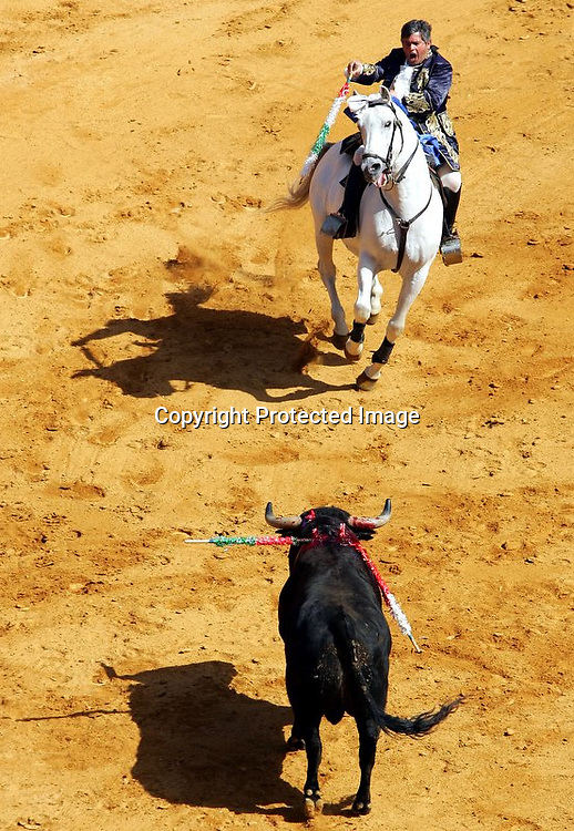 V.10.Valencia, 19/03/2005. El rejoneador Joao Moura le entra al toro durante la corrida de rejones que ha tenido lugar esta mañana en el coso valenciano con motivo de la Feria de Fallas. EFE/Kai Försterling.