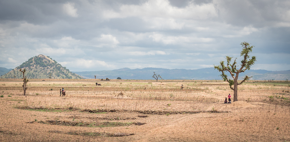 30 May 2019, Mokolo, Cameroon: People work their fields near Minawao. The Minawao camp for Nigerian refugees, located in the Far North region of Cameroon, hosts some 58,000 refugees from North East Nigeria. The refugees are supported by the Lutheran World Federation, together with a range of partners.