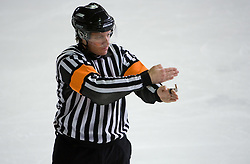 Znak za udarec s palico. Slashing. Slovenski hokejski sodnik Damir Rakovic predstavlja sodniske znake. Na Bledu, 15. marec 2009. (Photo by Vid Ponikvar / Sportida)