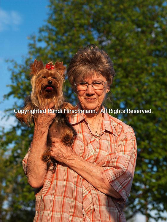 """Yorkshire Terrier, AKC, 1-year-old """"Tag"""" photographed in Fairbanks, Alaska and with owner Mary Mellinger of Belton, Missouri.  (PR)"""