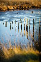 Erosion control in marsh.