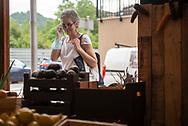 A woman looks at the shop window of a fruit and vegetable shop. Irun (Basque Country). May 8, 2020. As the downscalling progresses, there are more and more businesses and commercial activities that take over their activity, after having been closed due to the blockade ordered by the Spanish government to prevent the spread of the COVID-19 . (Gari Garaialde / Bostok Photo)