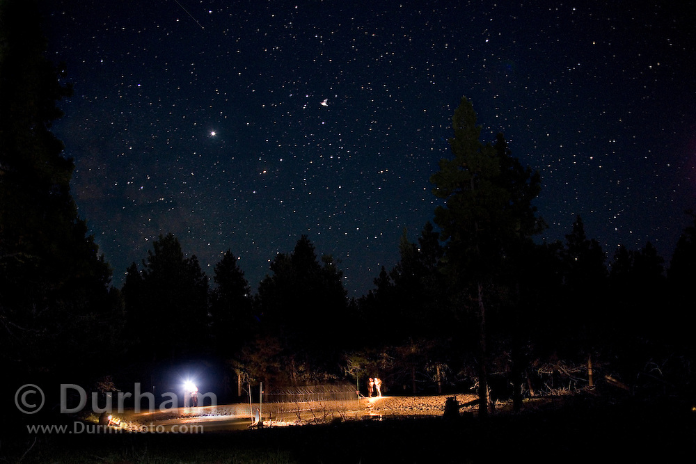 A bat survey team with mist nets set up over a pond at night in the Ochoco National Forest, Oregon.