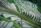 Stunning Terraced Fields China