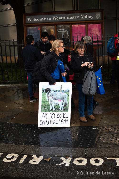 Anti-Brexit protesters at Westminster Abbey held a protest sign with the text No to BoJo's sacrificial lambs, during the People Votes March in London
