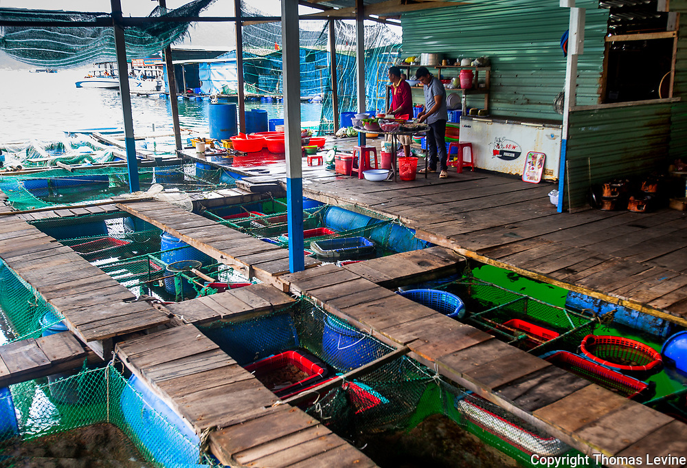 Fresh fish holding tanks at a restaurant at a Vietnamese fishing village. Popular with travel companies and tourists.