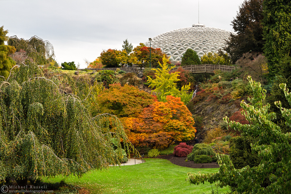 Fall Maple foliage and the Bloedel Conservatory at Queen Elizabeth Park in Vancouver, British Columbia, Canada