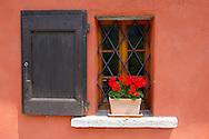 Couorful geramiuns in a rustic window - Val Verzasca - Ticino - Switzerland