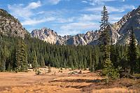Siver Star Mountain from Washington Pass meadows, North Cascades Washington