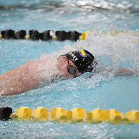 Swimming & Diving: University of Wisconsin-Oshkosh Titans