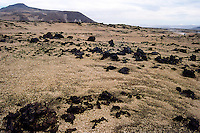 Iceland. The area close to Askja was used during training for the Apollo program. The main objective in Askja was to study geology.