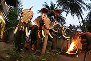 Elephant Procession<br /> Kerala, India