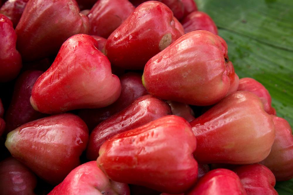 Asia, Myanmar, pile of rose apples