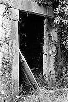Kroatia 2012-06.<br /> En gammel ruin i skogen på Lopud.<br /> Foto: Svein Ove Ekornesvåg