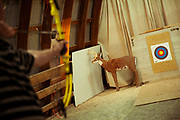 Archery with fake deer and target
