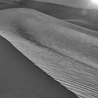 20110325-Mesquite Flats-D3x