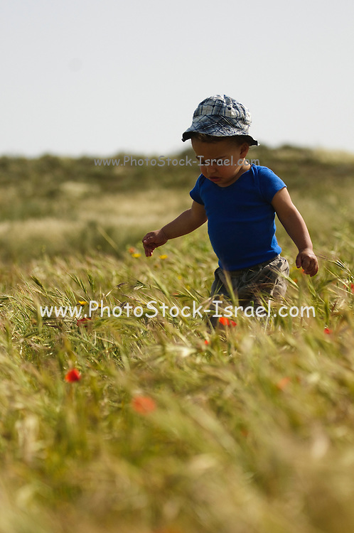 Two year baby boy plays alone in a spring field