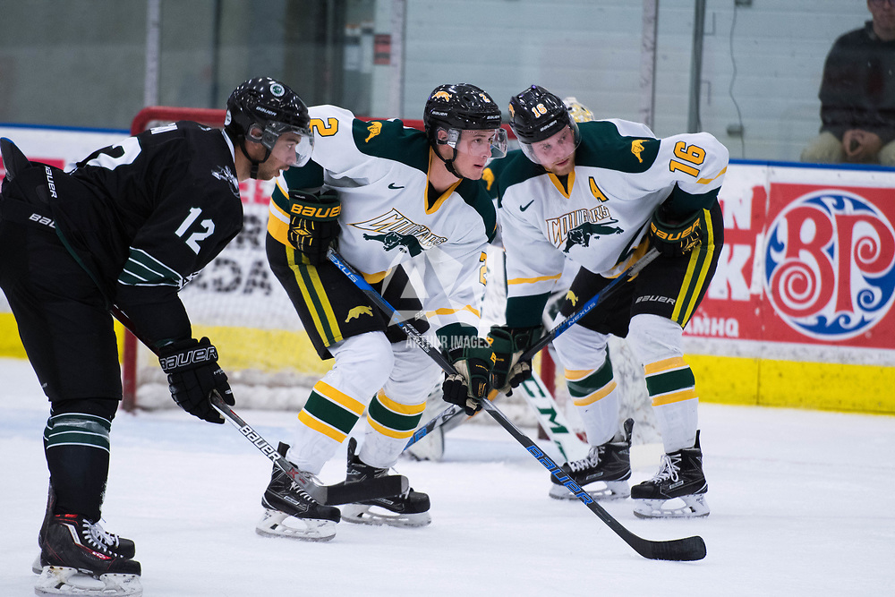 4th year forward Zach McPhee (16) of the Regina Cougars in action during the Men's Hockey Home Opener on October 6 at Co-operators arena. Credit: Arthur Ward/Arthur Images