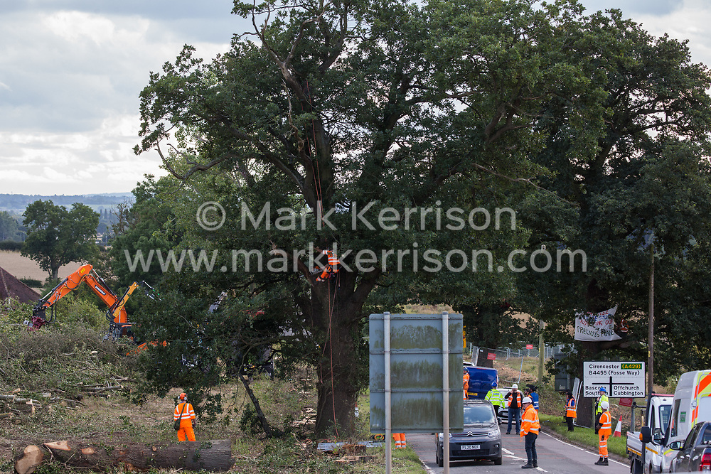 Offchurch, UK. 24th August, 2020. HS2 workers prepare to fell a mature oak tree alongside the Fosse Way as part of works in connection with the HS2 high-speed rail link. The controversial HS2 infrastructure project is currently expected to cost £106bn and will destroy or significantly impact many irreplaceable natural habitats, including 108 ancient woodlands.