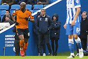 Brighton Manager, Chris Hughton looks on during the Sky Bet Championship match between Brighton and Hove Albion and Wolverhampton Wanderers at the American Express Community Stadium, Brighton and Hove, England on 1 January 2016. Photo by Phil Duncan.