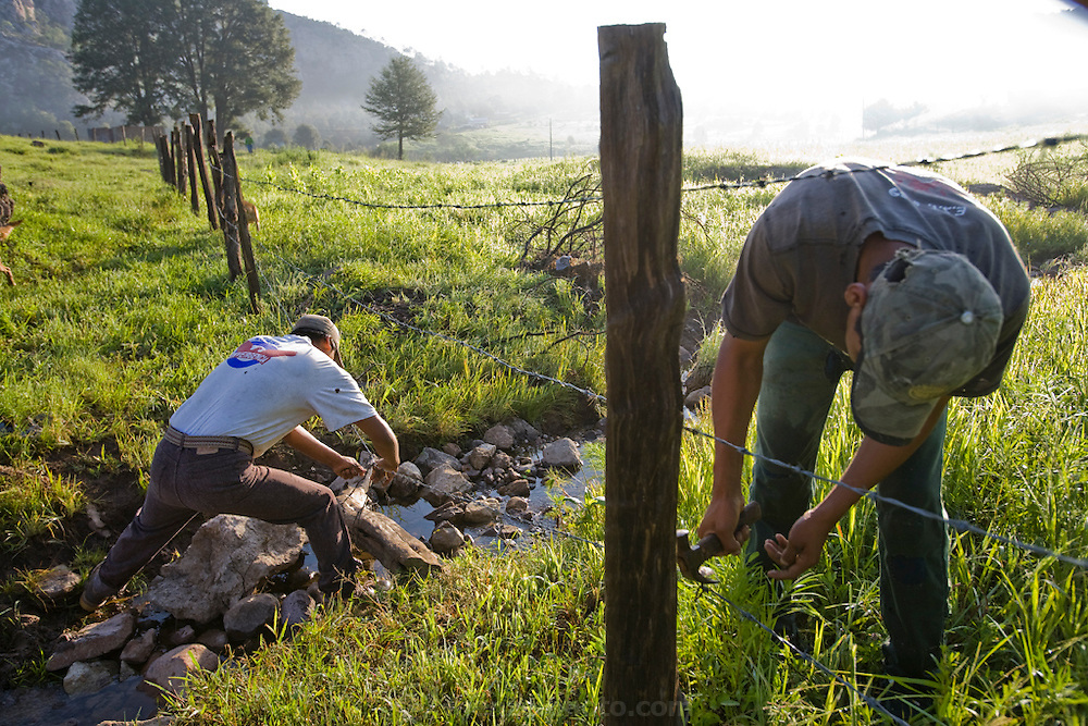 Rancher José Angel Galaviz Carrillo repairs fences with his 22 year old nephew, Rigoberto at his home in the Sierra Mountains near Maycoba, in the Mexican state of Sonora.  (José Angel Galaviz Carrillo is featured in the book What I Eat: Around the World in 80 Diets.)