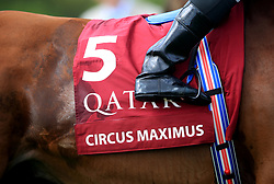 File photo dated 31-07-2019 of A close up view of horse ahead of the Qatar Sussex Stakes. A partnership has been announced between Breeders' Cup and Qatar Racing which will begin at this year's meeting at Del Mar, which takes place over November 5-6. Issue date: Tuesday October 12, 2021.