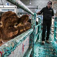 Farm Profit Programme event, Thainstone