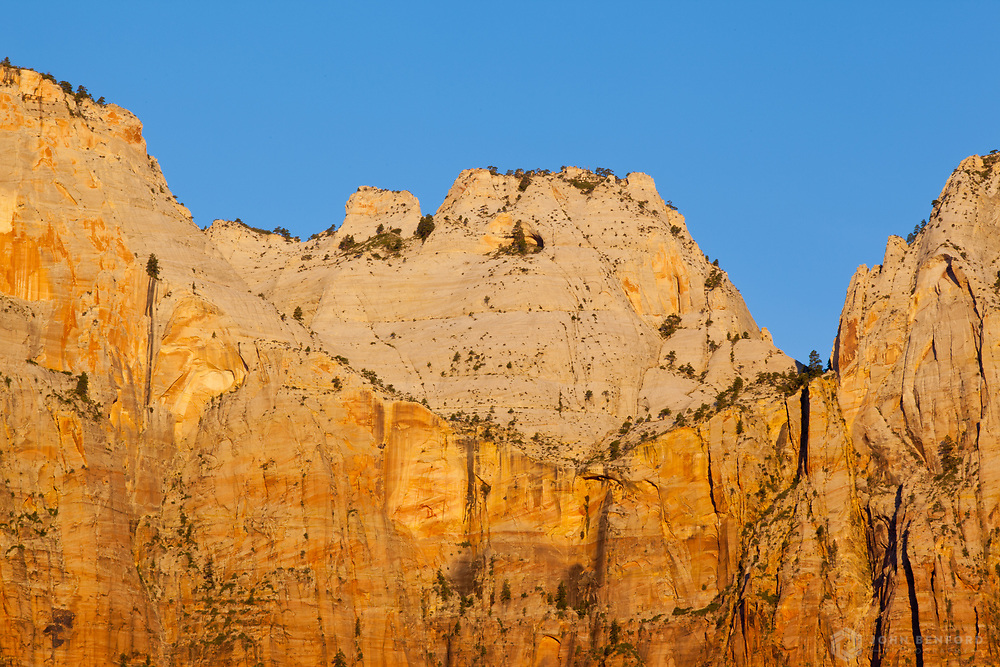 Dawn Light on the Towers of the Virgin<br /> Zion National Park, Utah