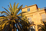 Looking up at palm tree blue sky and historic building in the centre of Malaga, Spain